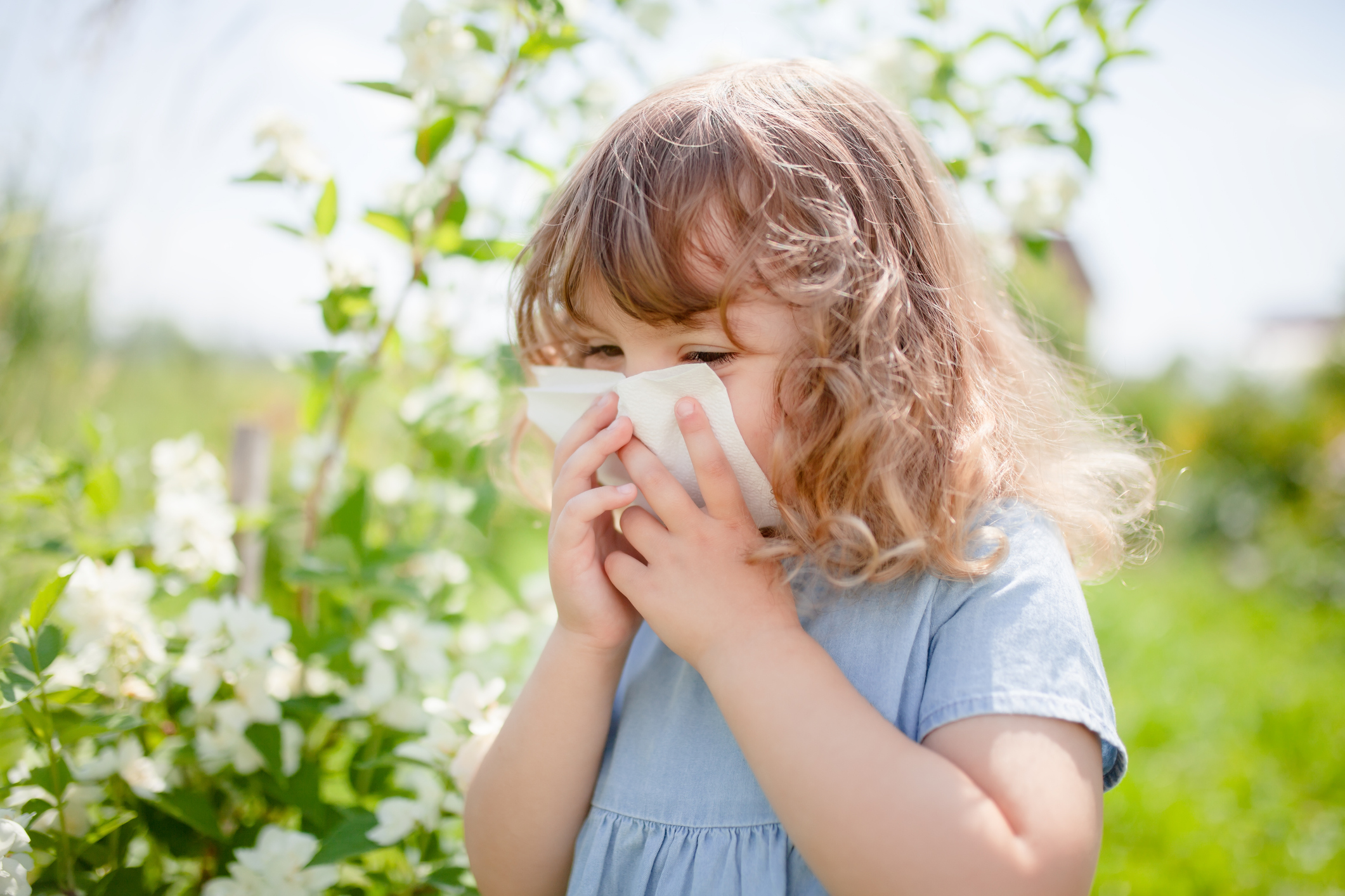 Tips To Reduce Springtime Allergies