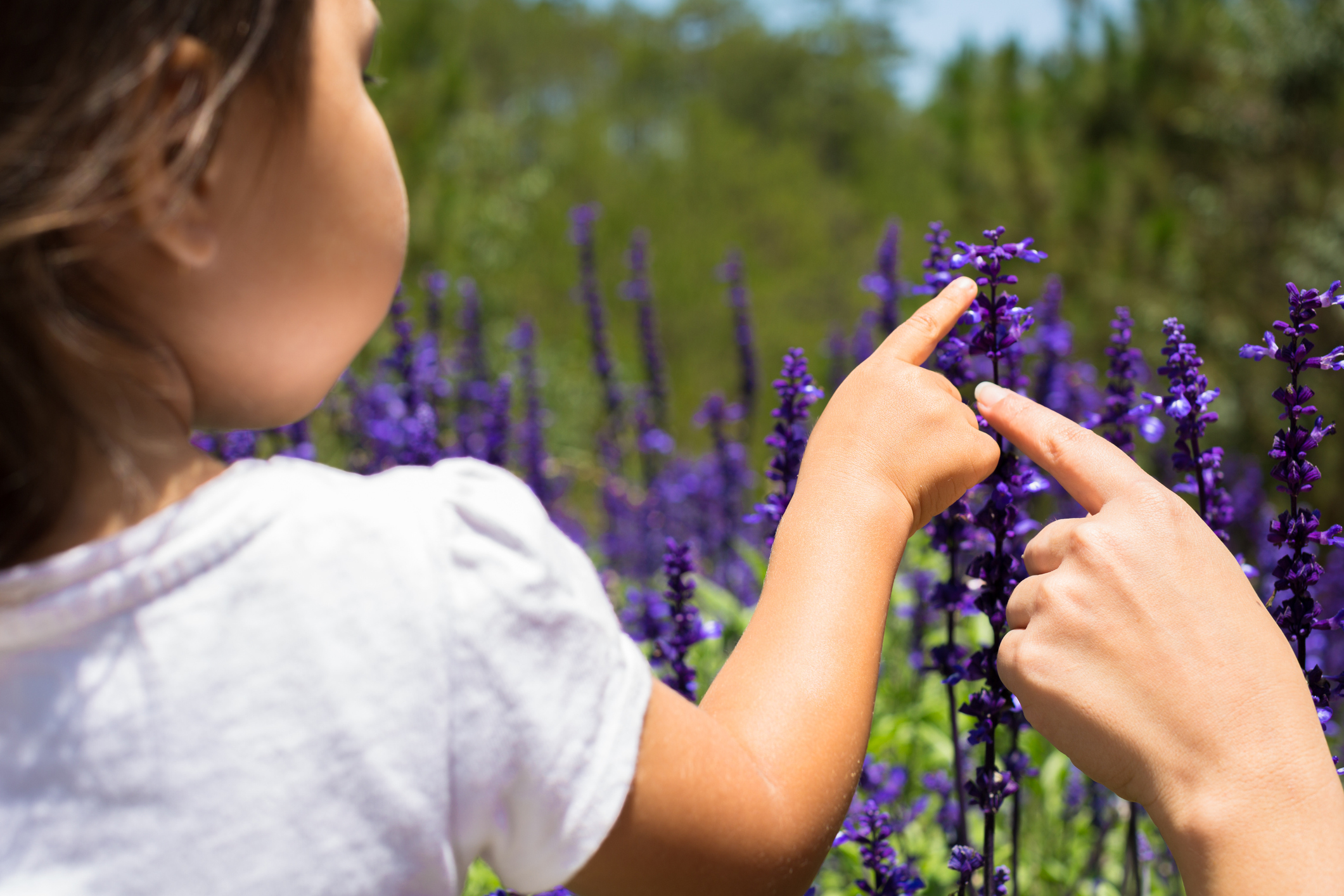 Are Essential Oils Safe For Children?